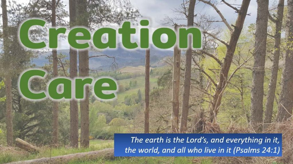 """Mountain view through trees with text Creation Care, """"the earth is the Lord's and everything in it, the world, and all who live in it"""" (Psalms 24:1)."""